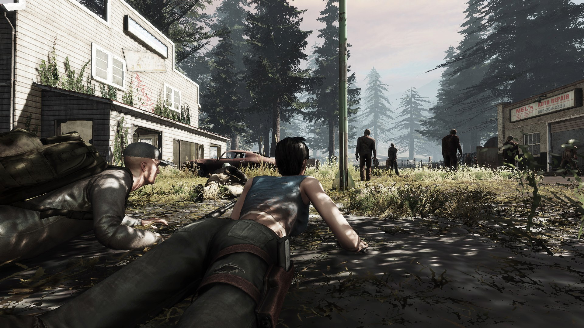 Download The War Z – FULL GAME Emulator