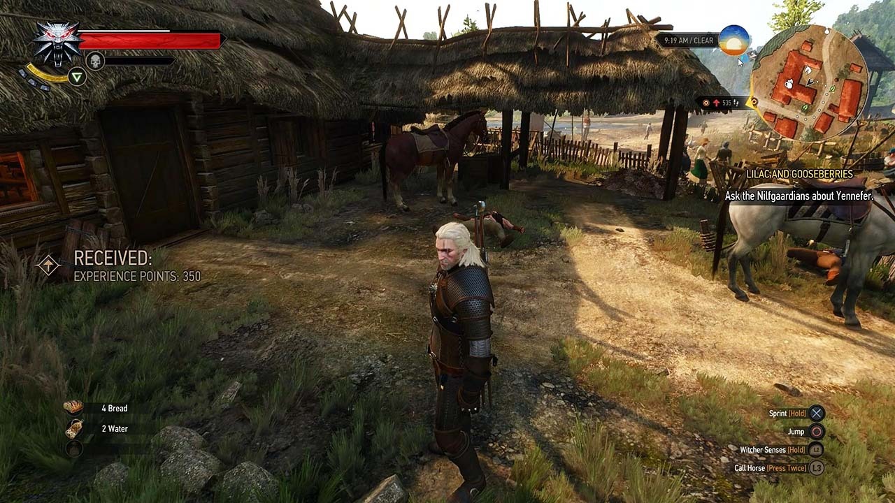 Ведьмак 3: Дикая Охота | The Witcher 3: Wild Hunt (Namco Bandai Games) (RUS|ENG|MULTi15) [L|GOG] - Скриншот 3