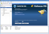FileRescue Professional 4.8 (2012) PC | Portable