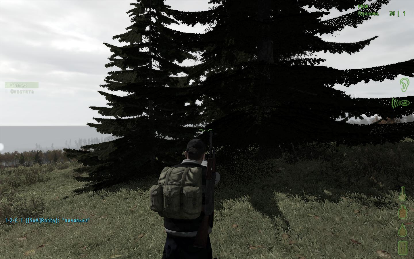 Arma 2: DayZ (2013) PC | RePack by F.A.B.I.S. - Скриншот 3